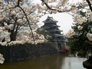 christian-kober-cherry-blossoms-matsumoto-castle-matsumoto-city-nagano-prefecture-honshu-island-japan